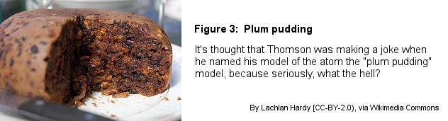 Fig3Plum_pudding