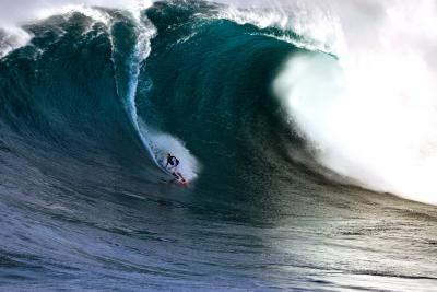 dead_surfer